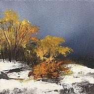 November snow Strathnairn