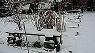 Then It Snowed In December