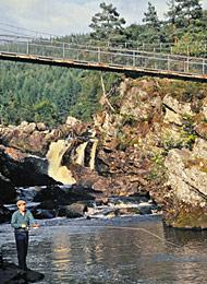 salmon fishing on the river conon, river blackwater
