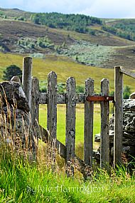 Gateway to the Hills