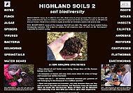 SOILS 2- BIODIVERSITY