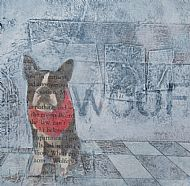 Gwen Black 'Woof'