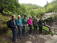 Rogie Falls & Contin Forest Group