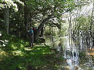 Cauldshiels Loch path