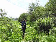 Path finding, Old Melrose Estate