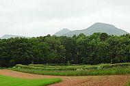 The 3 Eildon Hills
