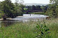 Tweed view near Peebles
