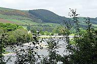 Tweed view