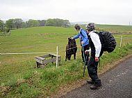 Walk near Alyth