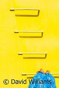The yellow skip