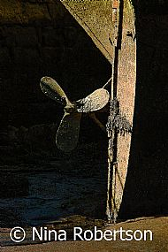 Propeller at rest