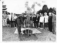 Dennis Dunbar of Ross and Cromarty Community Development planting a commemorative tree to Frances Fowler