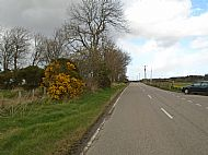 Looking east along B9169 towards Teanagairn Cottage with entrance on the left.