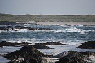 Ardskenish beach from Dun Gallon