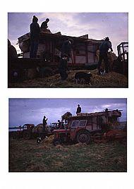 HPA193   Threshing, Quivals Farm? (J Towrie)