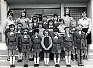 HPA144   Brownies 1973