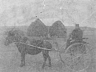 HPA332   David Sinclair, first horse and cart that went to the post