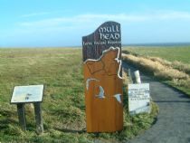 mull head sign