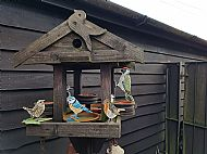 selection of our range of bird barden/post toppers