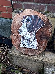 pet plaques made to order