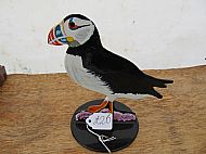 PUFFIN POST TOPPER ornament for garden or patio etc