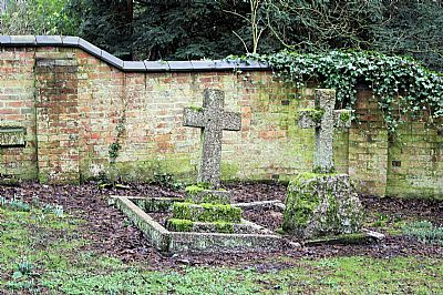 the robinson graves