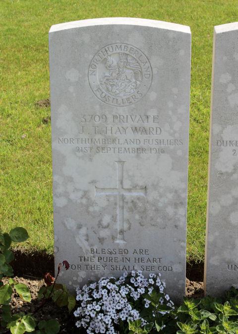 john thorpe hayward - gravestone