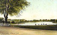 Pond (East) Whiteinch Park