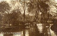 Duck Pond, Whiteinch Park