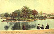 The Pond in Whiteinch Park