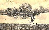 Pond in Victoria Park, Glasgow