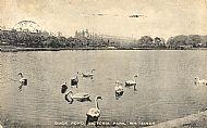 Duck Pond, Victoria Park