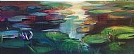 Water lily pond - Inverewe