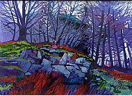 Rocky Outcrop, Cruachan Woods.