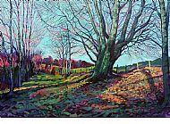 Winter Beech Tree, Ederline.