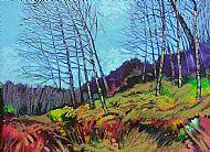 Winter Beeches, Achnamara.