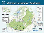 Sanquhar Woods