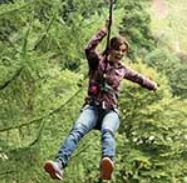 Go Ape - Live Life Adventurously