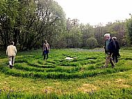 Taynish Labyrinth