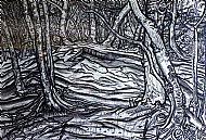 Ancient Birchwood