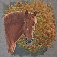Autumnal Suffolk - Suffolk Punch horse