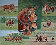 A Celebration of the Suffolk Horse - SOLD