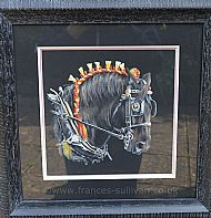 Firey Steed - black percheron horse