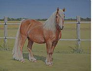 Palomino Pony Portrait