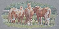 Suffolk Tails - Suffolk Punch horses NEW