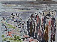 Cormorants on the Farne Islands