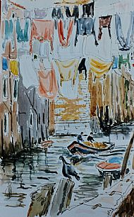 Washing Lines & Pigeon