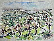 Algarve Frulit Trees