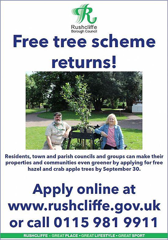 free tree scheme poster
