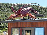 Crayfish Shop, Okiwi Bay, 30km North of Kaikoura